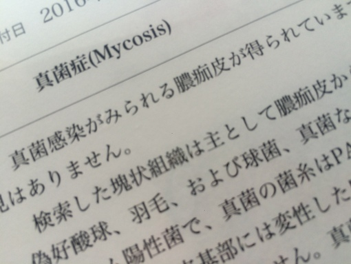 IMG_2815.JPG